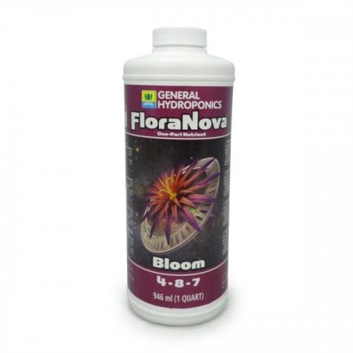 FLORA NOVA Bloom - GHE