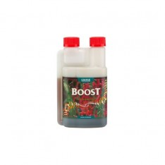 BOOST ACCELERATOR 250 ml - CANNA