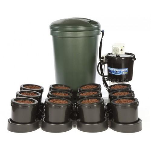 IWS 12 pots Basic