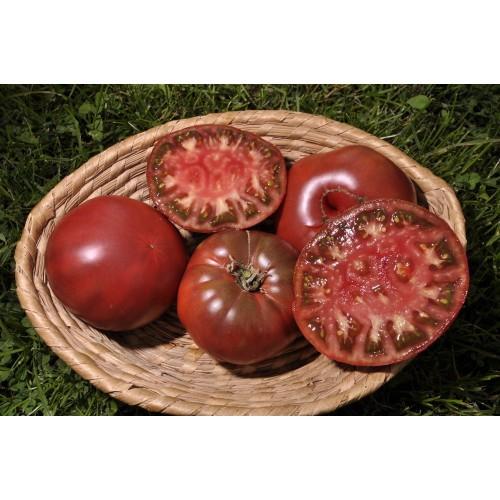 """Tomate  Noire De Mi-Saison """" Noire de Crimée """""""