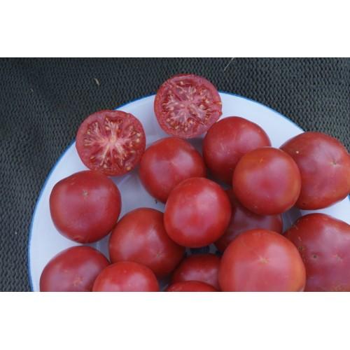 "Tomates Roses de Mi-Saison ""Rose de Berne"""