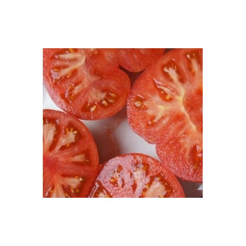 "Tomate Rose de Mi-saison ""Watermelon Beefsteak"""